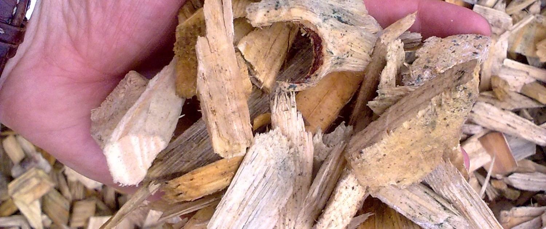 Virgin woodchip